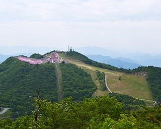 山頂からの絶景を気軽に楽しめる