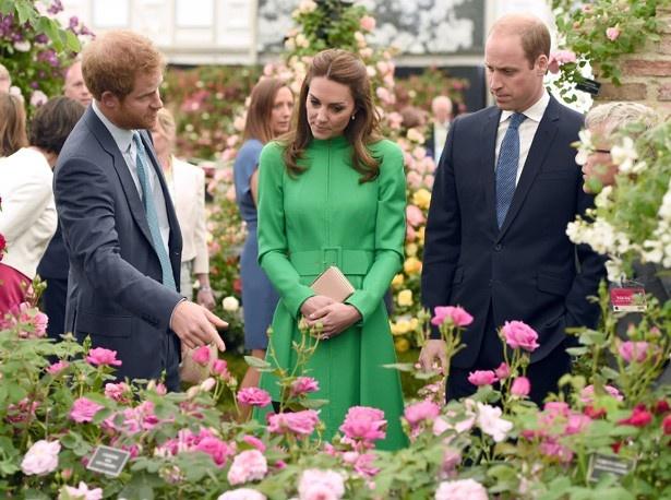 ヘンリー王子も夫妻と一緒に庭園見学