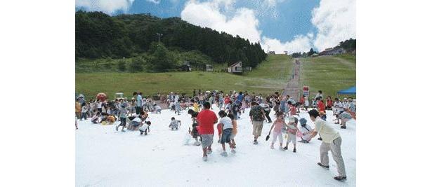 毎年恒例の雪の広場が登場