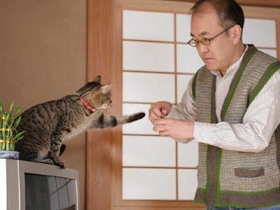 猫と戯れる中年男性を演じる温水洋一