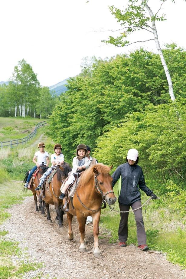 「開田高原 木曽馬の里」では2~3歳から騎乗可能だ