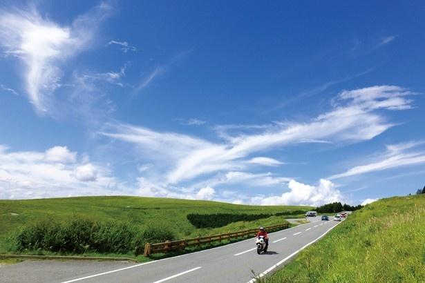 長野県の「ビーナスライン」でのドライブはまさに爽快!