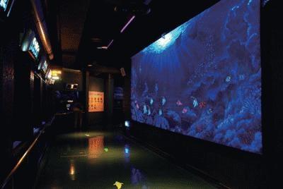 夜、魚たちはどうしてる?