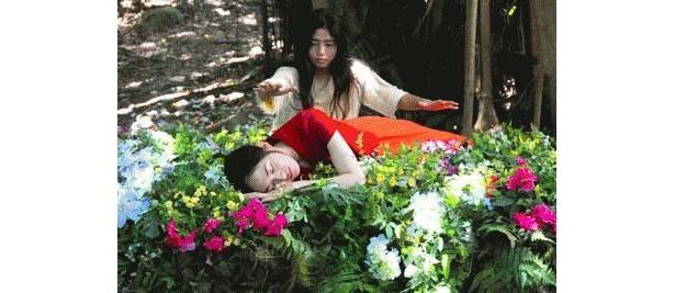 精霊(キジムン)が息づく沖縄の美しい自然にも注目