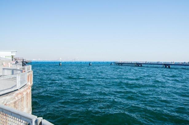 本牧 海 釣り 施設 再開