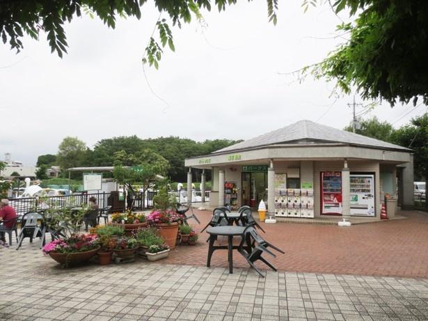 売店ではソフトクリームやアイスなども販売(「石神井公園」)