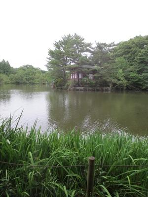 奥に見える厳島神社のほか、石神井城跡も残る(「石神井公園」)