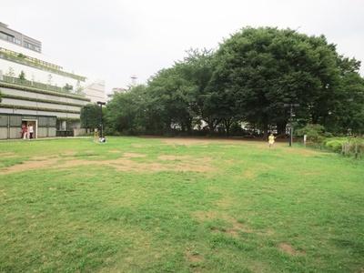 練馬駅前にある、原っぱが広がる平成つつじ公園