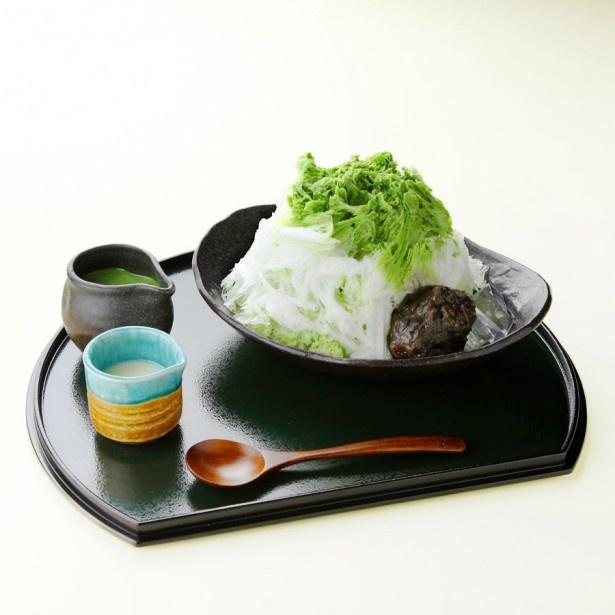 日本茶ソムリエの厳選抹茶と繊細な氷が優しく溶け合う