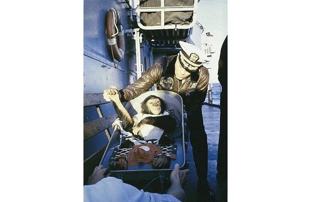 チンパンジーのハムがアメリカ初の宇宙飛行に成功!