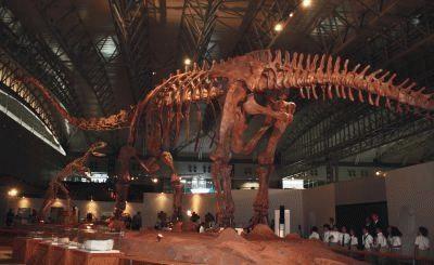 「ジャイアント・マメンキサウルス」、うしろから見るとこんな感じ