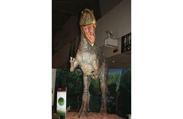 特に肉食恐竜は、するどい歯や爪など細部も再現されている