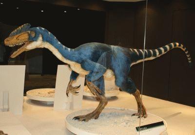 世界最古のティランノサウルス類「グアンロン」の姿も!