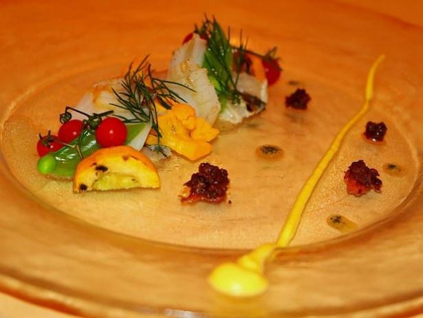 【写真を見る】夏らしい色合いの「真鯛の炙りとアオリイカのグリル バジルの香るソースとオリーブのアクセント」