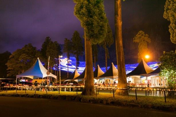 会場の入り口にはイルミ屋台村が設置され、グレードの高い食事を提供する