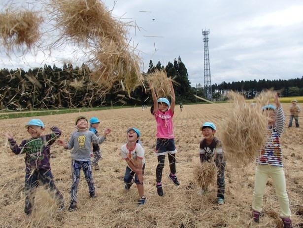 秋田県の自然と、高い学力を体験するツアー ※写真はイメージ
