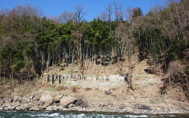 延べ440人の地域住民の協力の下、約4カ月かけて竹林を伐採。これまでに2.2haの竹林を整備した