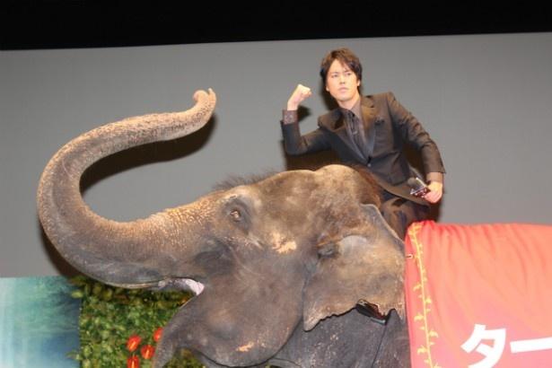 ゾウもしっかりポーズを取ってくれた