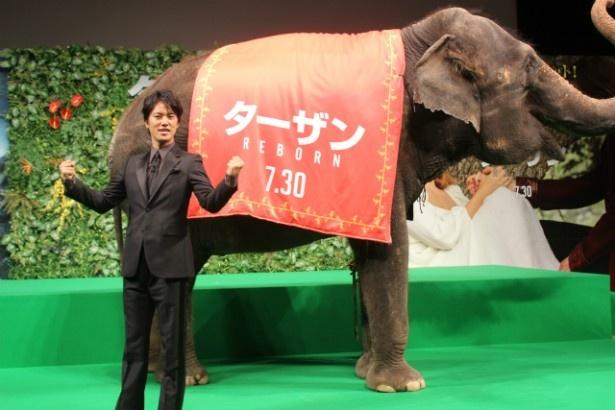 ゾウとフォトセッション