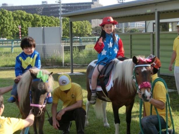ファミリーで遊べるポニー乗馬体験もあり!