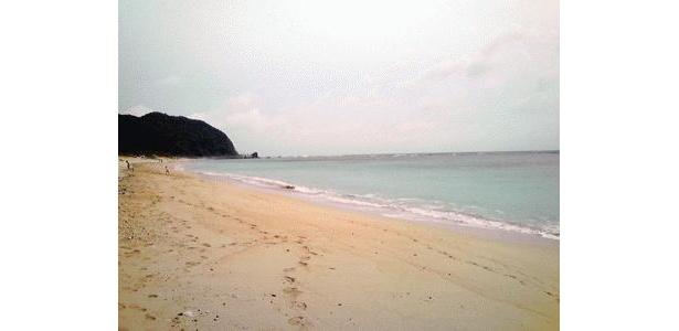 キレイな浜辺は奄美ならでは