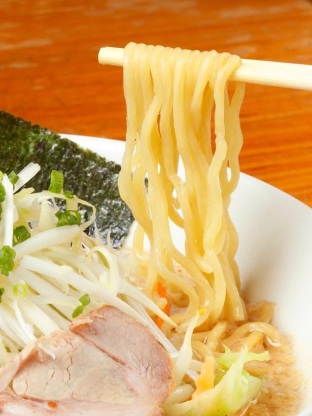 濃厚スープに負けない力強い味わいの中太縮れ麺。スープを吸うとさらにモッチリとした食感に