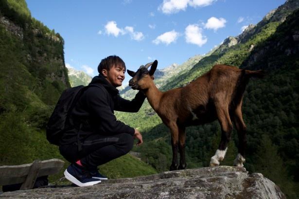 【写真を見る】成宮は大自然の空気に触れ、動物などと戯れる