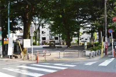 木陰が多く、夏でも涼しげな雰囲気の「高円寺中央公園」