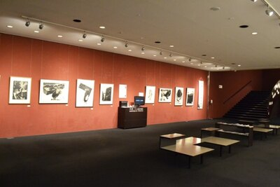 「座・高円寺」のギャラリースペースでは、絵画や書、立体造形など多彩なアート作品を月替わりで展示