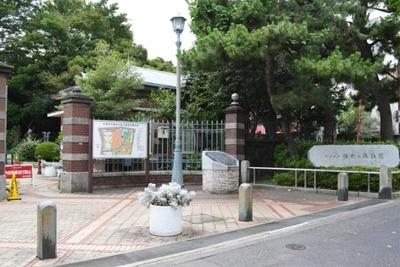 蚕糸試験場の跡地につくられた「蚕糸の森公園」。蚕糸試験場は、70年にわたってこの地にあり、地域の人々に親しまれてきた