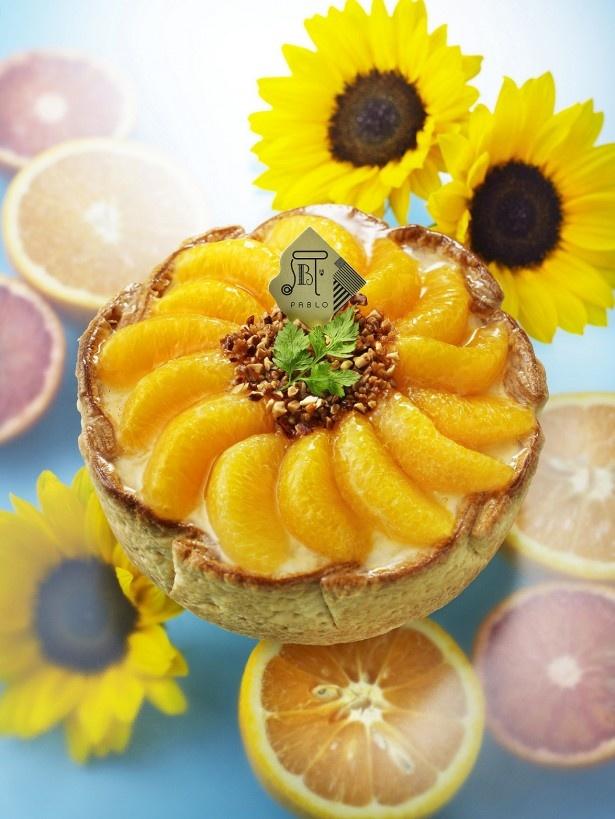 ヒマワリをイメージした夏限定の華やかなチーズタルトは女子会やパーティにも最適「~真夏のひまわり~たっぷりオレンジのチーズタルト」(1800円)