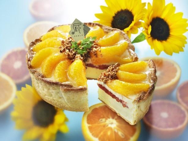 【写真を見る】売り切れ必須!オレンジをふんだんに使ったパブロの季節限定チーズタルト