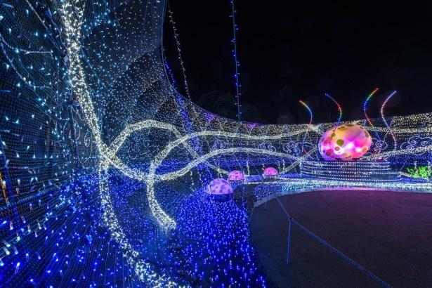 巨大な龍の卵が鎮座する「龍の巣窟」。ここでは龍の誕生がテーマの光と音のショーを5分間隔で開催