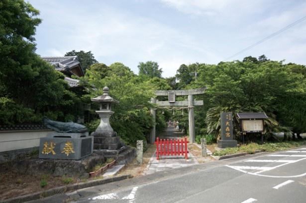 大森神社。入り口左のナマズさんが目印。本殿前には、狛犬ならぬ狛ナマズがいるので注目して!
