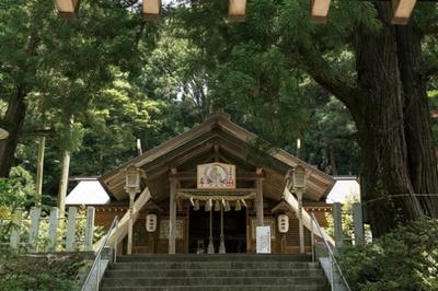 高倉神社。日本書紀にも名前が登場し、1800年前の古墳時代に創建されたという古い社。樹齢1800年の綾杉は必見!