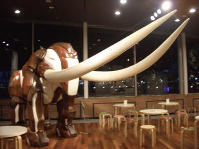 象の鼻カフェにいる象。高さは2m以上はあり!