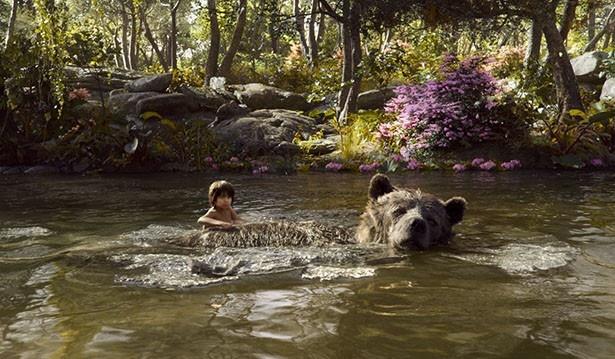 スタジオがジャングルへと変貌する!驚きのメイキング映像が公開
