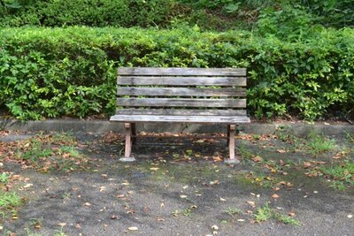 作品中で祐樹と香織の母親が座っていた「いろは坂桜公園」のベンチ