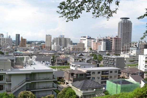 「いろは坂桜公園」からは、聖蹟桜ヶ丘エリアが一望できる