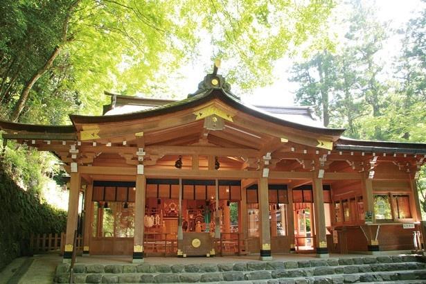 【写真を見る】厳かな雰囲気の「本宮」では、良縁成就のご祈祷を3000円から受けることができる/貴船神社
