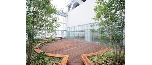 ブリーゼタワー8階ルーフ部の屋上庭園