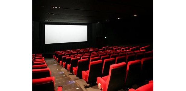 こんなに大きな劇場を貸切に出来るとは、なんとも贅沢なサービスだ