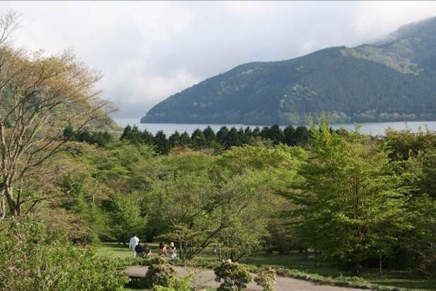 【写真を見る】箱根ビジターセンター周辺は絶景ポイントがいっぱい!