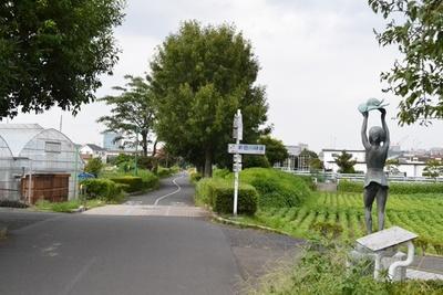 「下河原緑道」と「新田川緑道」の交差点。左右に田んぼなどが広がる、都内とは思えないのどかな景色