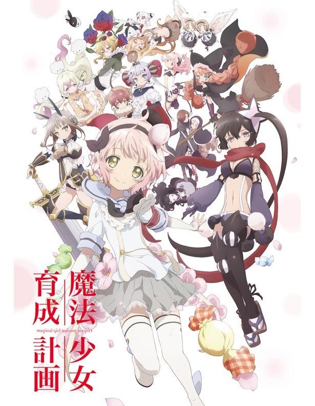 TVアニメ「魔法少女育成計画」キャストコメント到着! キャラクタービジュアル&PVも解禁