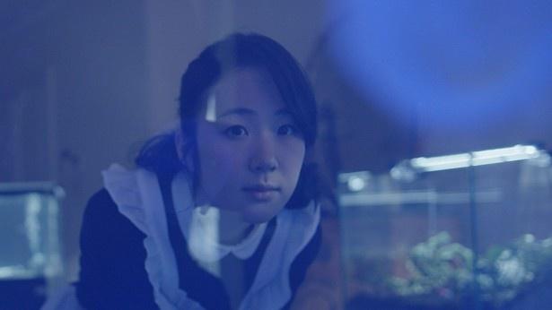 『リップヴァンウィンクルの花嫁』シーン 6/8