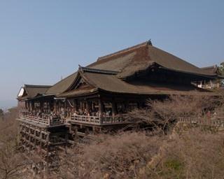 四季の絶景が魅力の名刹!5分で知る清水寺の見どころ