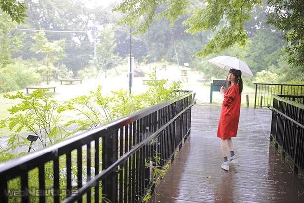 上田麗奈フォトコラム・小雨の丘を登って木立を抜けて