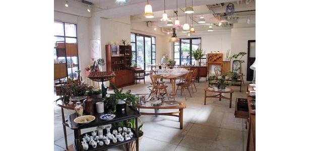 波佐見焼きの「洒落陶」の作品や、ガーデンデザイン「早蕨(さわらび)」の観葉植物などもならぶ