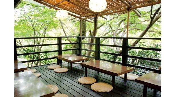 食事は三千院の参道が見渡せる眺めのいい和食堂で。木々に囲まれた月見台もおすすめ!/魚山園